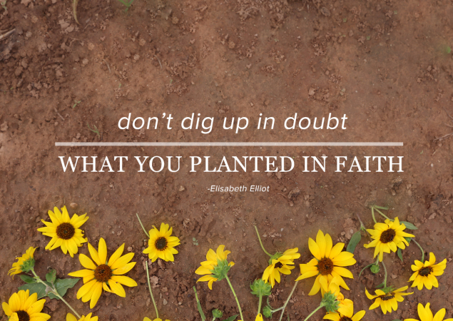 """Don't Dig Up In Doubt, What You Planted In Faith."""